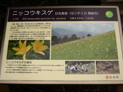 akanagi120716-108