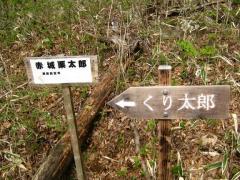 arayama120513-102