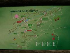 arayama120513-112