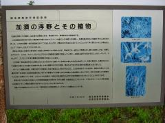 ukiya120617-108