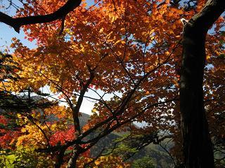 yusengatake121008-230