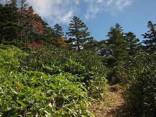 yusengatake121008-233