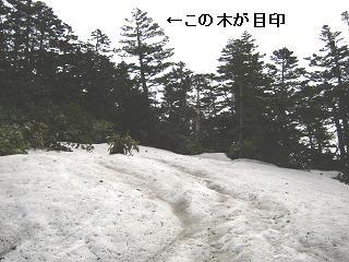 yusengatake121008-234