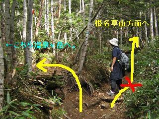 yusengatake121008-236