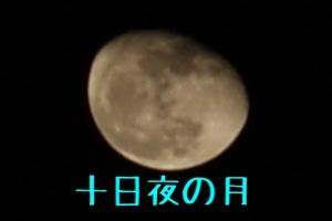 fc2blog_20141110221517782.jpg