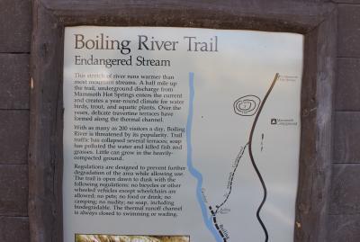 B river 2