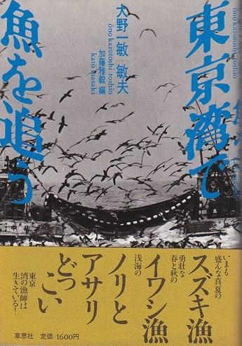 東京湾で魚