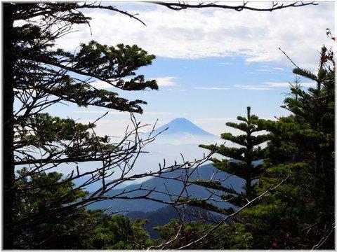 富士山が見えました!