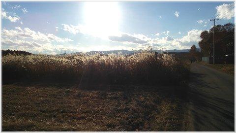 陽が傾く冬