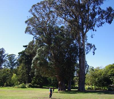 20141014SF公園