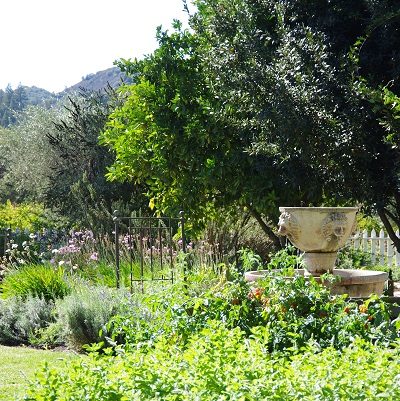 20140102プリストン庭