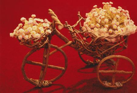 ブログ自転車に乗って