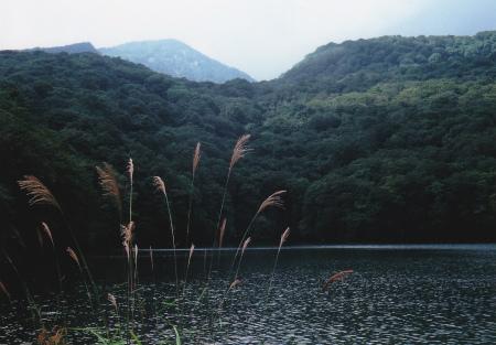 ブログ蔦沼2
