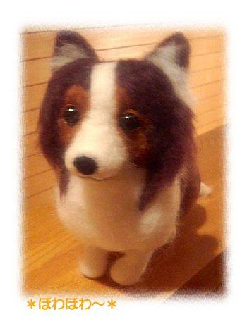 シェルティちゃんお人形1