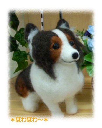 シェルティちゃんお人形3