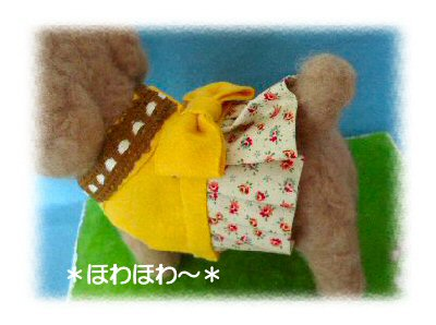 toypoodle-4.jpg