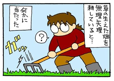 畑での遭遇-crop1