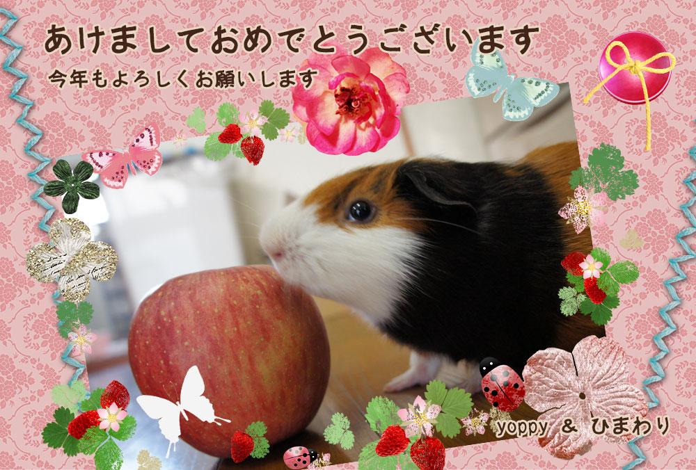 年賀状blog