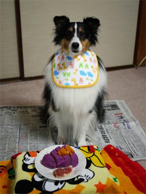 04第2誕生日
