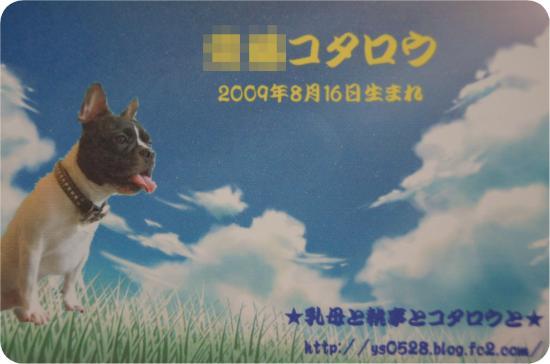 DSC01804_convert_20120703230041.jpg