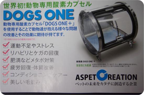 DSC04705_convert_20120826233157.jpg