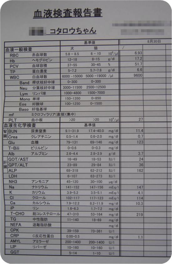 DSC05326_convert_20120831142407.jpg