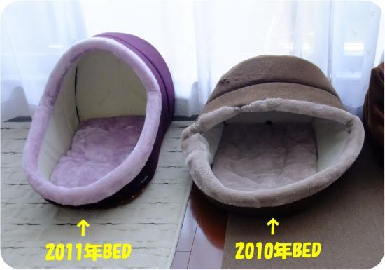 DSC05892_convert_20120917204213.jpg