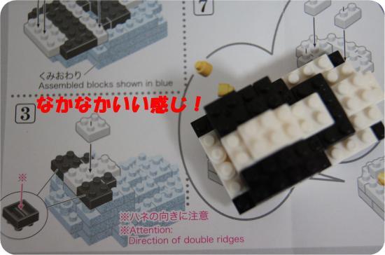 DSC07006_convert_20121203131102.jpg