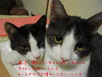 05_20130118101223.jpg