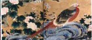zen747-2.jpg