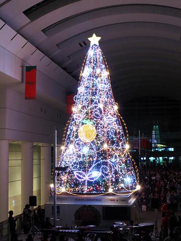 シンギングツリー2012 点灯式