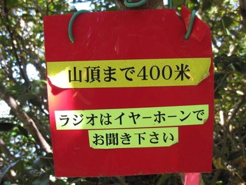 IMG_6353.jpg