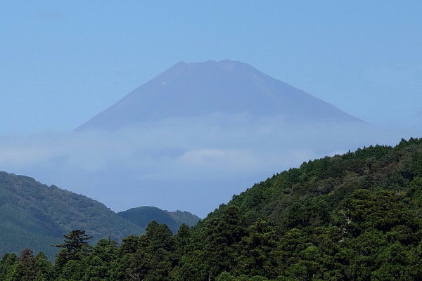 narukawa20.jpg