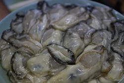 追加の牡蠣