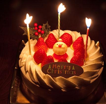 20091223christmascake.jpg