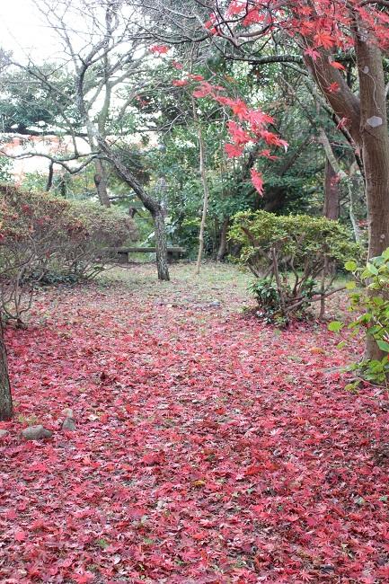 源氏山公園12