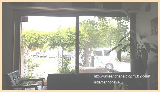 お店の窓から120601