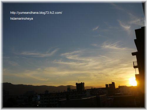 夕陽120719
