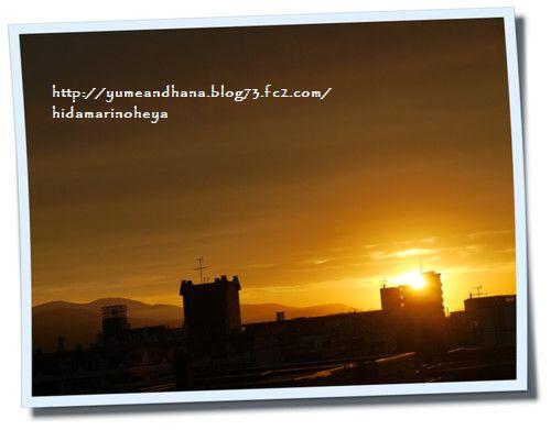 夕陽120810
