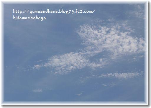 うろこ雲120908