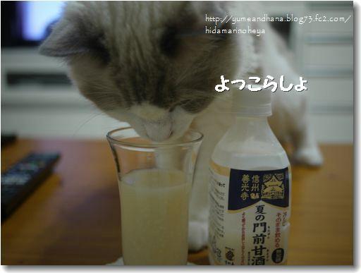 甘酒00120910