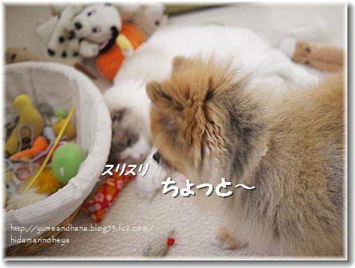 ゆめのおもちゃ籠120921