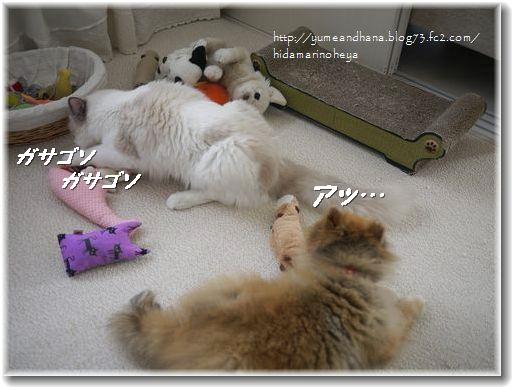 ゆめのおもちゃ120921