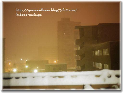 雪201212011138