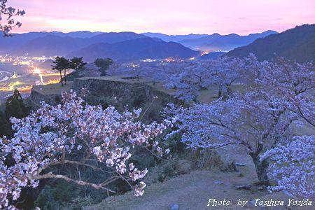 竹田城 桜 2