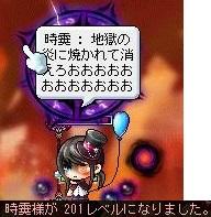 Maple130326_005706.jpg