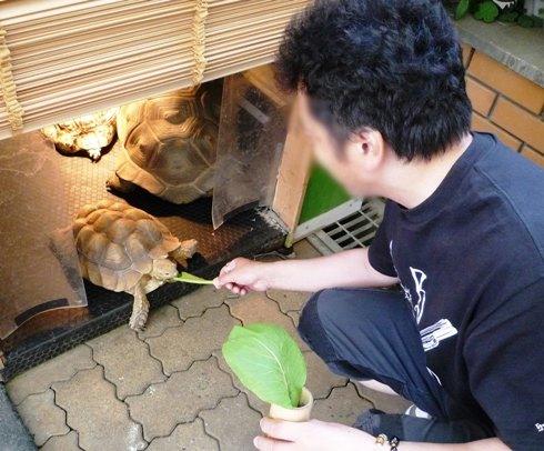 伊豆2012・5・18~19 (10)
