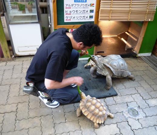 伊豆2012・5・18~19 (11)