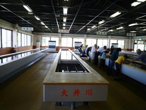 伊豆2012・5・18~19 (16)
