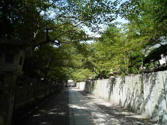 四国12・8 (11)